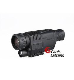 Vision Nocturne - CANIS LATRANS
