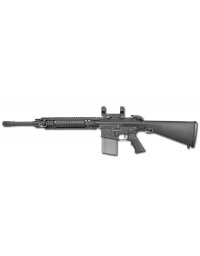 SR25 M110 SASS - ARES